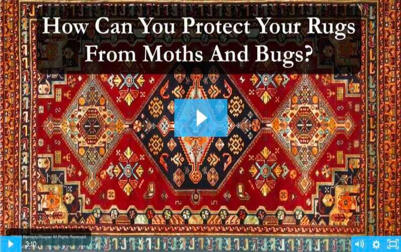 RugVideos Moth And Bug Protection
