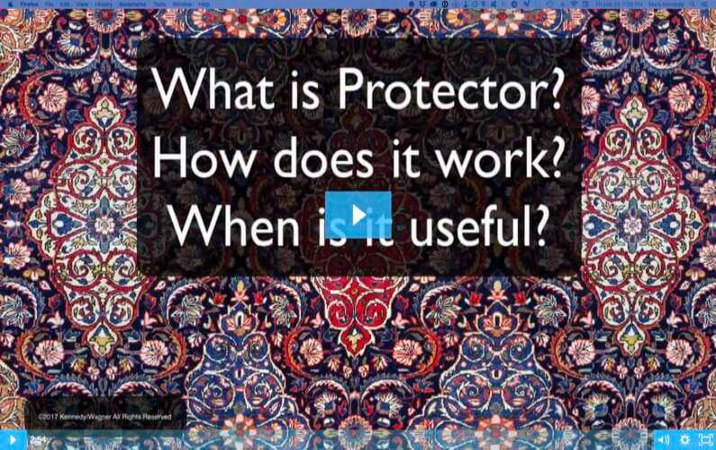 RugVideos What Is Protector